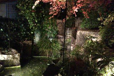 瀬里奈クラブ花かんざしのVIP庭と池