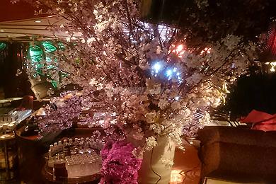 クラブ花かん!桜の装飾がされた店内画像